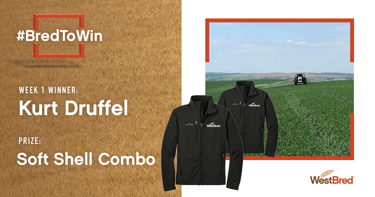 Week 1 of BredToWin contest's winner image and softshell combo