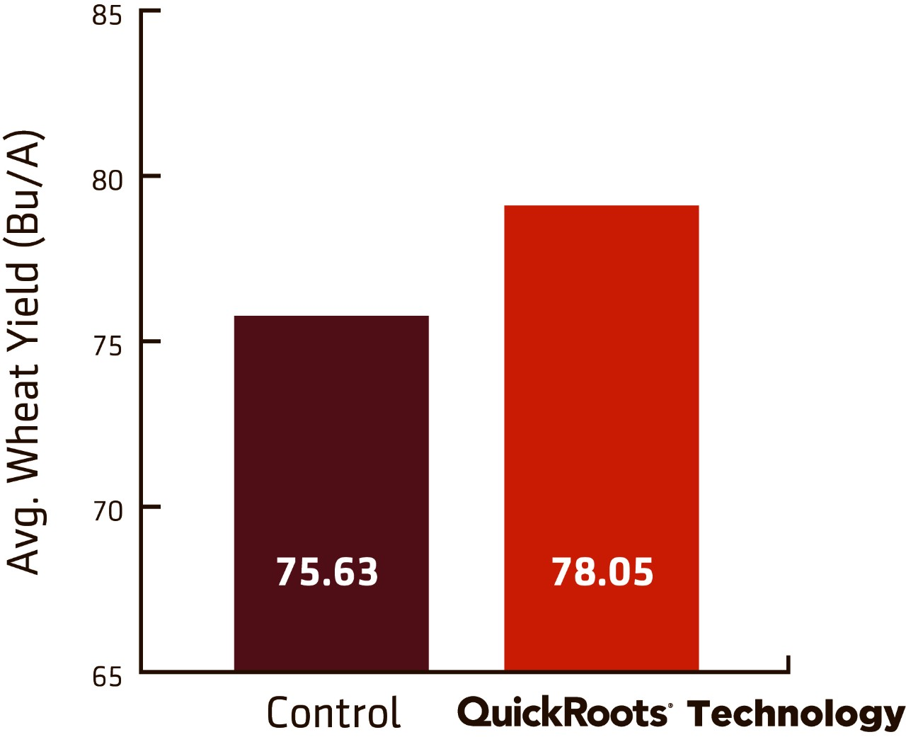 QuickRoots Technology outperforms the average wheat yield